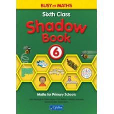 Busy at Maths 6 Shadow Book